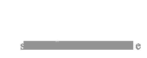 Bizurk Logo 300px